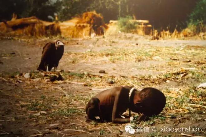《饥饿的苏丹》,摄影师凯文·卡特